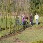 Regenbogenland Weidennestbau 1